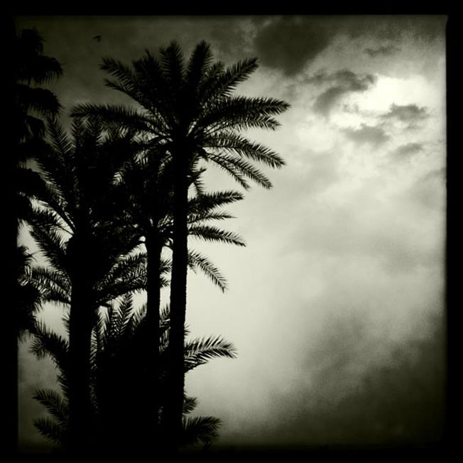 Snapshot diaries Morocco